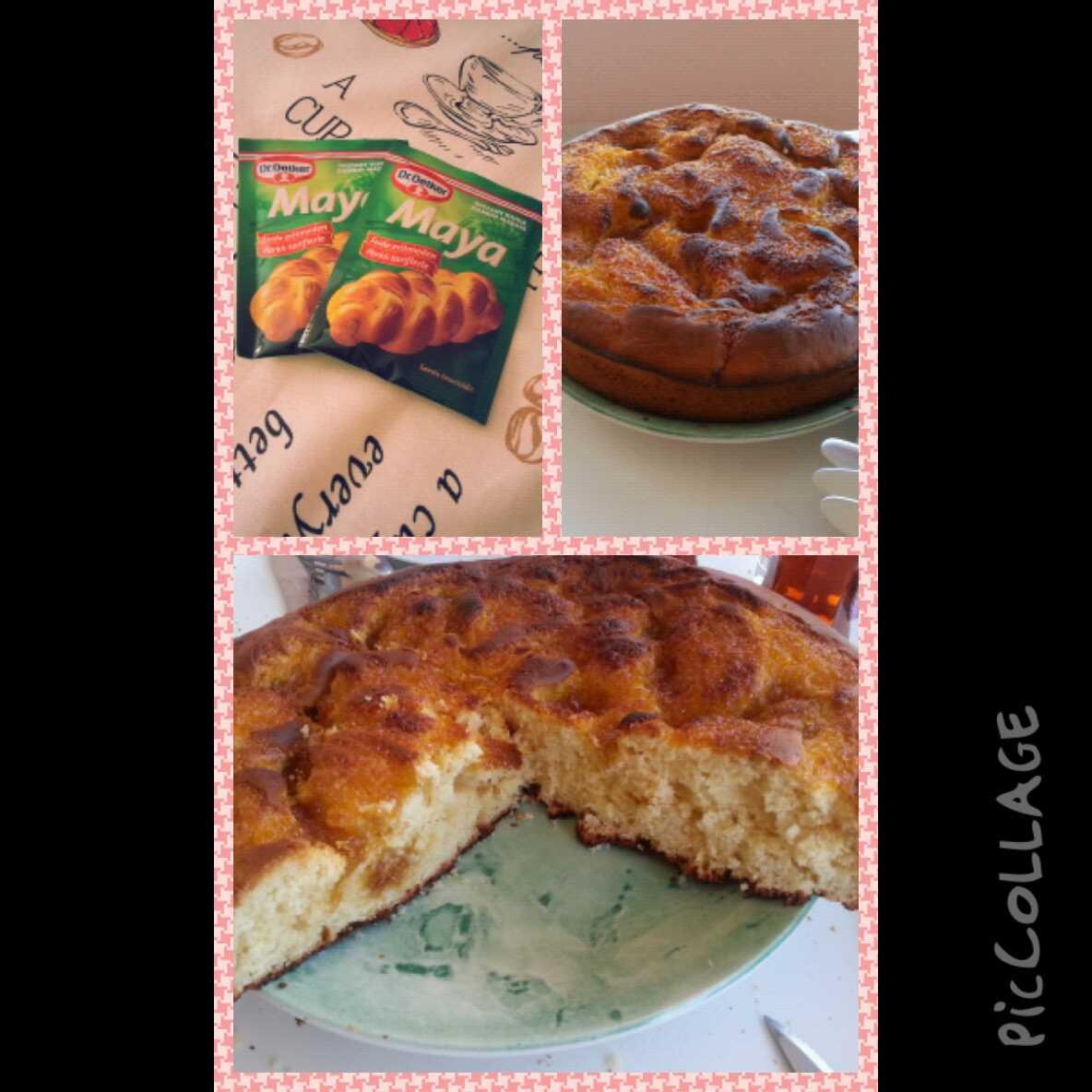 Mayalı Kek